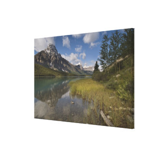Waterfowl lake along the Icefields parkway, Canvas Print