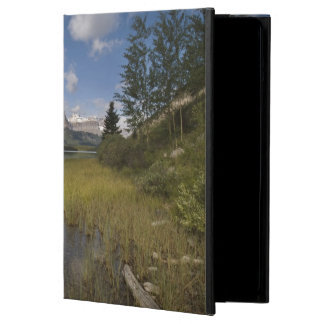 Waterfowl lake along the Icefields parkway, Case For iPad Air