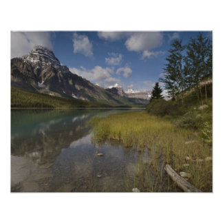 Waterfowl lake along the Icefields parkway, Poster