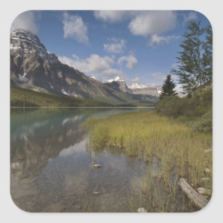 Waterfowl lake along the Icefields parkway, Sticker