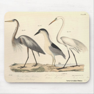 Waterfowl Mouse Pad