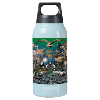Waterfowl of North America Insulated Water Bottle