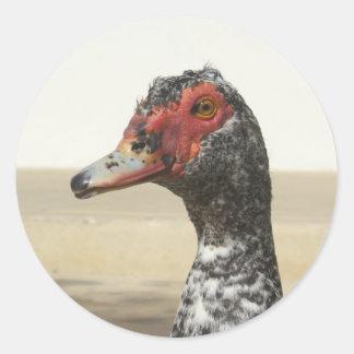 Waterfowl Stickers 001