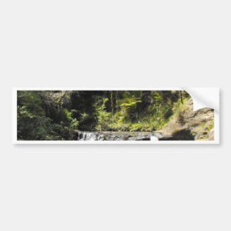 Waterhole at Goldie Bush Walk Bumper Sticker