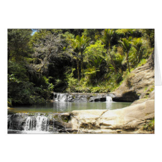 Waterhole at Goldie Bush Walk Card