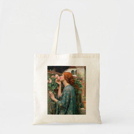 Waterhouse el alma de la bolsa de asas color de ro