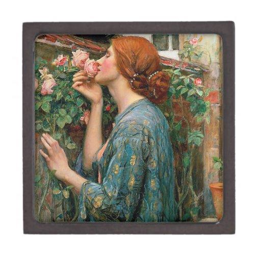 Waterhouse el alma de la caja de regalo color de r cajas de joyas de calidad