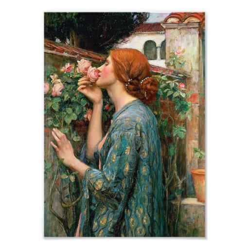Waterhouse el alma de la impresión del rosa arte fotográfico
