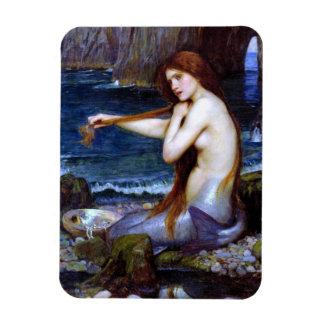 Waterhouse: La sirena Imán Rectangular