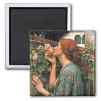 Waterhouse: Olor de rosas Imán Cuadrado