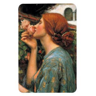 Waterhouse: Olor de rosas Imanes Rectangulares