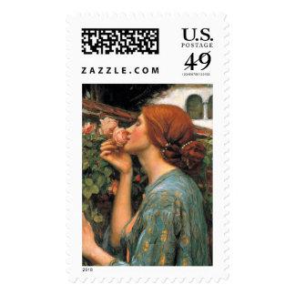 Waterhouse: Olor de rosas Franqueo