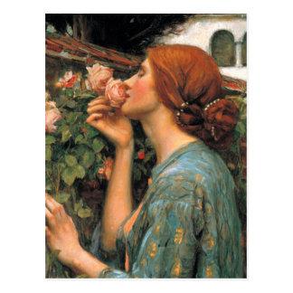 Waterhouse: Olor de rosas Postal