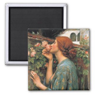 Waterhouse: Smell of Roses Refrigerator Magnet