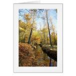 Waterhouses Autumn Woods Cards