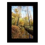 Waterhouses Autumn Woods Post Cards