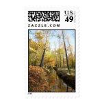 Waterhouses Autumn Woods Stamp