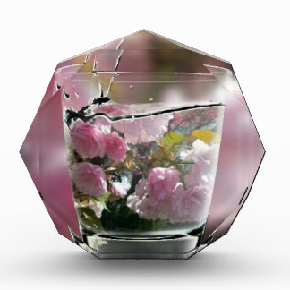 Watering Pink Flowers In A Glass Award