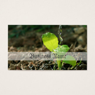 watering sapling business card