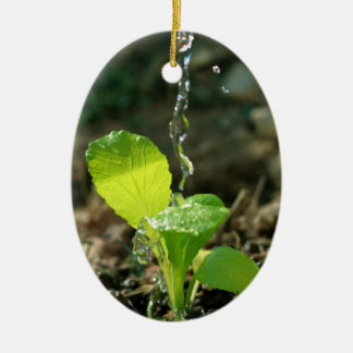 watering sapling ceramic ornament