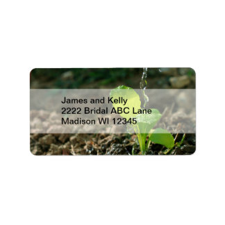 watering sapling label