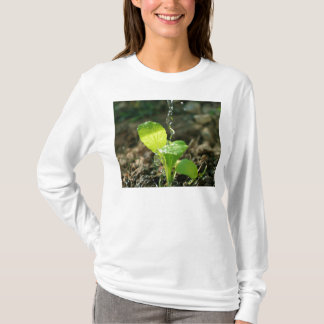 watering sapling T-Shirt