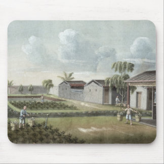 Watering tea plants (w/c on paper) mouse pad