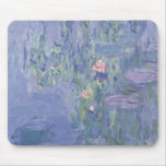 Waterlilies, 1907 (oil on canvas) mouse pad