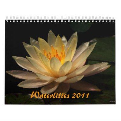 Waterlilies 2011 wall calendar