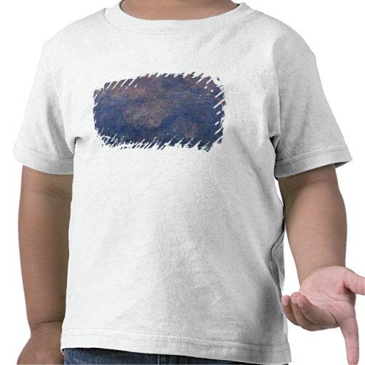 Waterlilies 2 camiseta