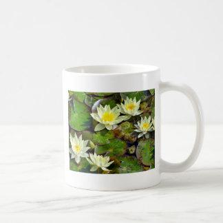 Waterlilies amarillo taza de café