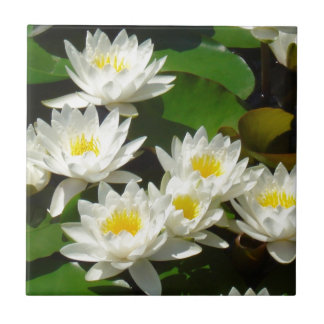 waterlilies and leaves tile