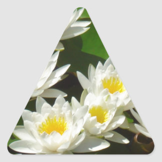 waterlilies and leaves triangle sticker