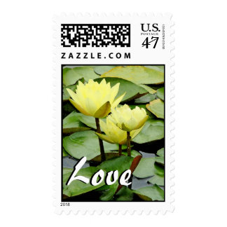 Waterlilies Art Love Postage