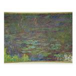 Waterlilies en la puesta del sol postales