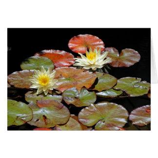 Waterlilies II Card