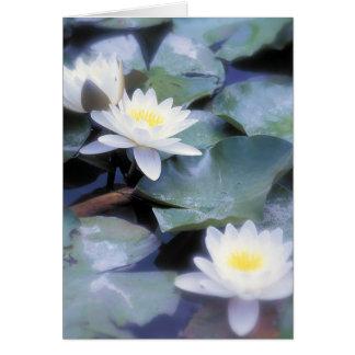 Waterlilies notecards card