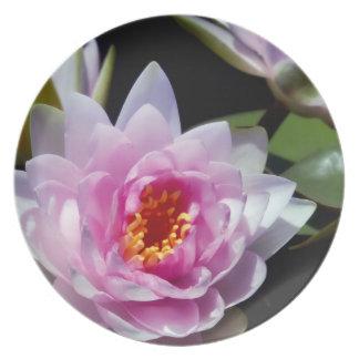 Waterlilies Platos Para Fiestas