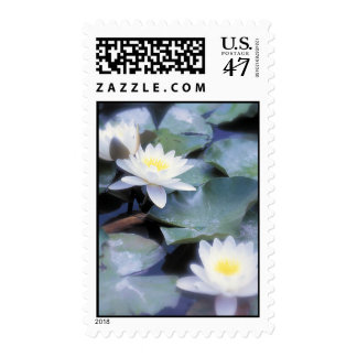 Waterlilies postage stamps