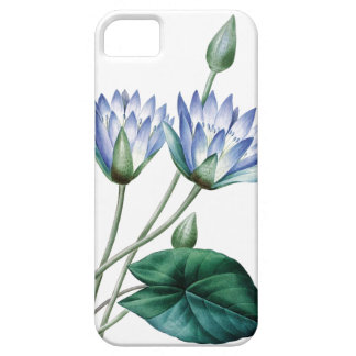 Waterlilies vintage illustration of Redoute iPhone SE/5/5s Case