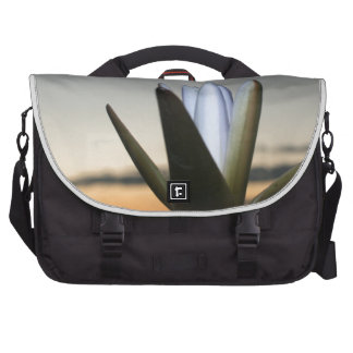 Waterlilly 3 laptop bags