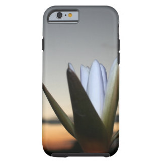 Waterlilly 3 tough iPhone 6 case
