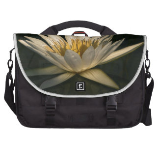 Waterlilly 7 bags for laptop