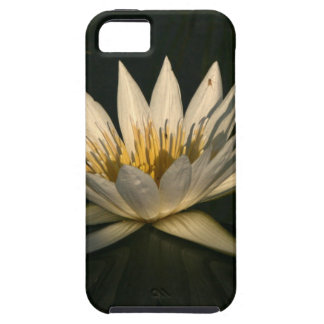 Waterlilly 7 iPhone SE/5/5s case