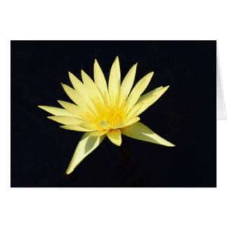 Waterlily amarillo tarjeta pequeña