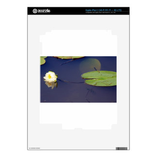 Waterlily and Lilypad Decals For iPad 3