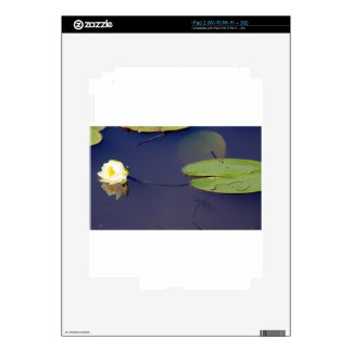Waterlily and Lilypad iPad 2 Decal