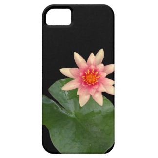 Waterlily and pink lotus flower iPhone SE/5/5s case