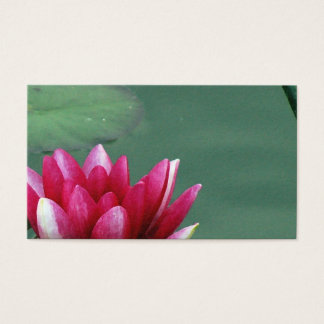 Waterlily Business Card Design