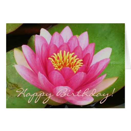 Waterlily Card Greeting Card